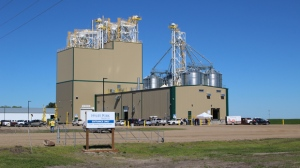 Hylife celebrated the grand opening of its new feed mill in Killarney in July. (Source: HyLife.com)