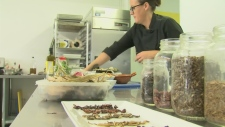 Maurin Arellano grew up eating insects, and now serves them on special occasions in Montreal