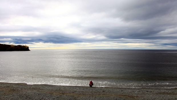 Gulf of St. Lawrence may soon be unable to support marine life: study
