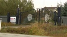 Fatal dog attack near Langdon