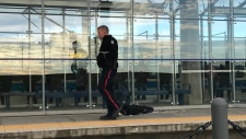 Man stabbed multiple times on Edmonton transit pl