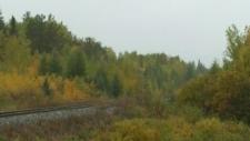More derailment details emerge