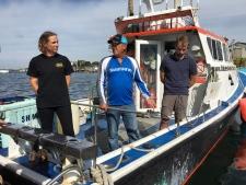 halifax shark crew