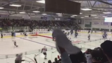 Fans fill the stands for the big game for Kraft Hockeyville Lucan on Tuesday, September 18, 2018. (Marek Sutherland / CTV London)