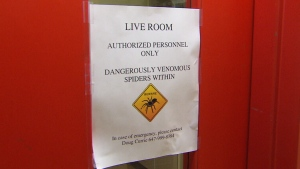 A warning sign at the Royal Ontario Museum during the Spiders: Fear and Fascination exhibition in Toronto, Ont. on Tuesday, Sept. 18, 2018. (CTV Toronto)
