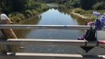 The Grand River in Amaranth Township, Ont. now has guiderails installed along a 400-metre stretch for safety. (CTV News/Mike Arsalides)