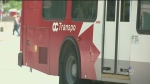 OC Transpo adult bus pass sales are down