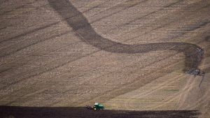 A tractor is used to plow a field on a farm near Chilliwack, B.C., on Wednesday May 16, 2018. (THE CANADIAN PRESS / Darryl Dyck)