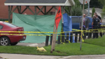 Tarps set up at the scene of a fatal shooting in Kitchener. (Sept. 20, 2018)