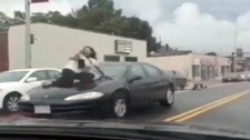 Caught on cam: Road rage victim clings to hood of