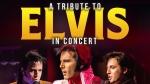 Tribute to Elvis Concert