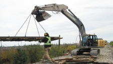 Beaver may have caused train derailment