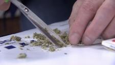 Health risks of pot still unclear: doctors