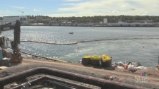 Tuft's Cove cleanup wrapping up