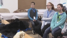 Students learning to be bear wise in Timmins