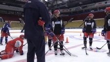 Hockey fans celebrate OHL season openers