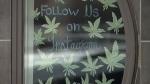 Cannabis themed café opens in Lethbridge