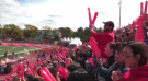 Fans cheer on the Guelph Gryphons during Homecoming weekend. (Sept. 22, 2018)