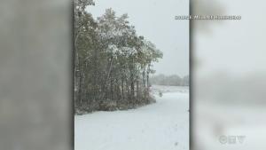 Manitobans wake up to no power after snowfall