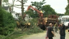 CTV National News: Residents return to disaster