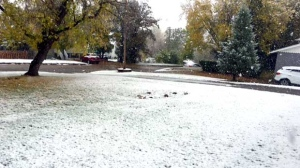 First snow in Neepawa. Photo by Harry Braun.