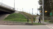 3 people attacked with hammer on bridge