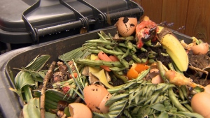 Food scraps in a bin.