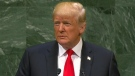 Donald Trump addresses the UNGA