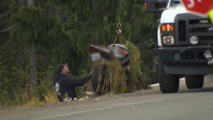 Emergency crews were called to Mount Washington's Strathcona Parkway around 3 p.m. Monday. Sept. 24, 2018 (CTV Vancouver Island)