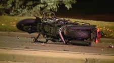 Calgary police are investigating after a motorcycle collided with a deer on Woodpark Blvd. S.W.
