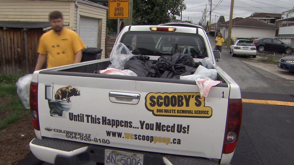 Scooby's Dog Waste Removal Service