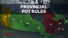 pot rules