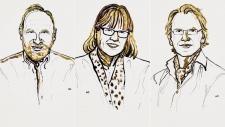 Arthur Ashe, Donna Strickland and Gérard Mourou