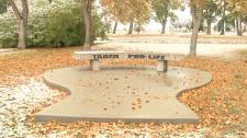 Taber Memorial Gardens - Taber Pro-Life