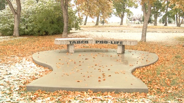 A bench in the Taber Memorial Gardens with a Taber Pro-Life engraving