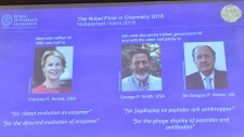 Frances Arnold, George Smith, Gregory Winter