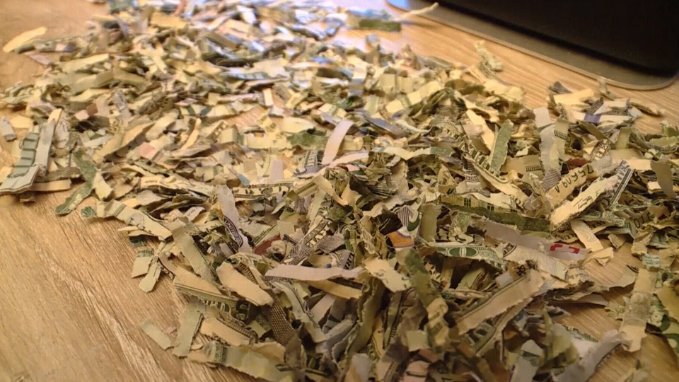 A toddler in Utah was a little too helpful when he shredded more than US$1,000 that his parents were saving.
