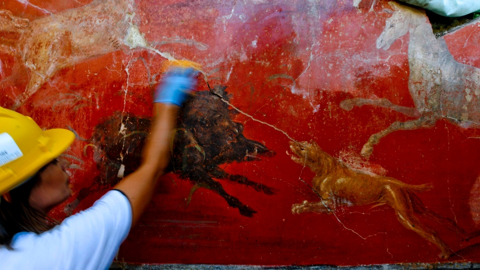 An archeologist works on a fresco in a house discovered during excavation works in Pompeii, Italy, presented to journalists Friday, Oct. 5, 2018. (Ciro Fusco/ ANSA via AP)