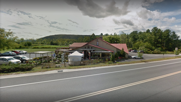 Killed When Limousine Crashes Into Crowd Outside Upstate Country Store