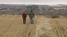 Highwood Crossing Farm - Tony Marshall
