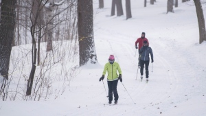 People cross country ski on Mount Royal in Montreal. THE CANADIAN PRESS/Graham Hughes