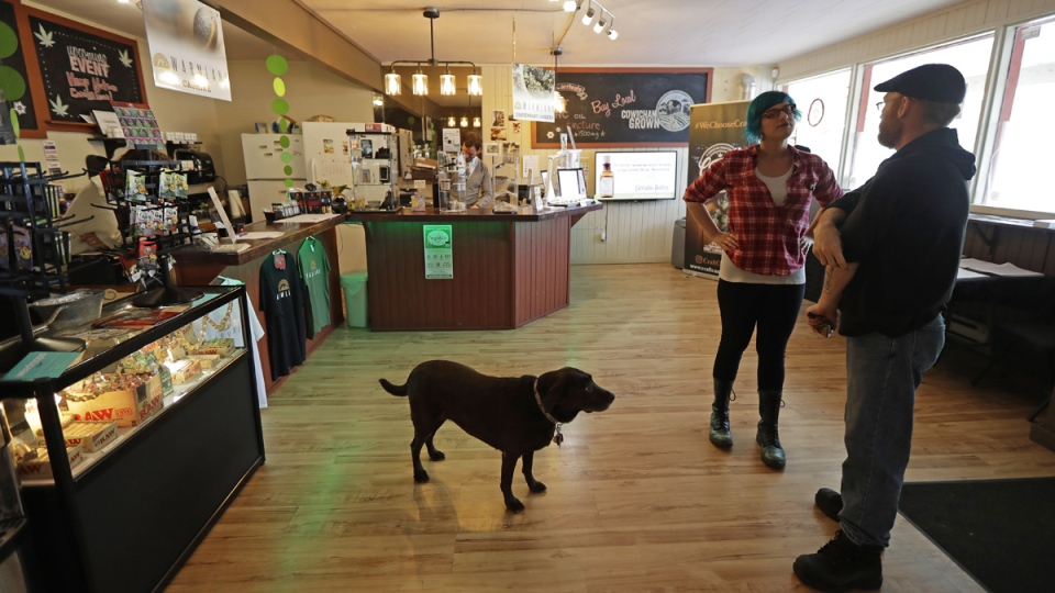 In this Sept. 24, 2018 photo, customer Seth McKay, right, talks with manager Ruby Bressan, at the Warmland Centre, a medical marijuana dispensary in Mill Bay, British Columbia, on Vancouver Island, as shop dog Delilah looks on. On Oct. 17, 2018. (Ted S. Warren / AP)