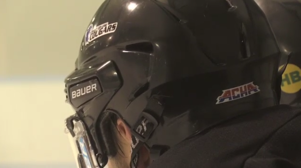 Sault College hockey team plays in American league