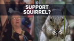 Woman booted from U.S. flight over squirrel