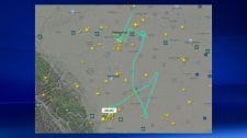 Flightradar24 - Diverted Dreamliner to Calgary