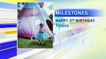 milestones-oct-11