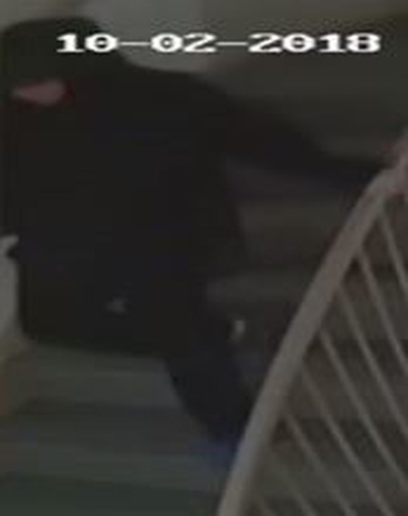 A security camera image of a suspect wanted in connection with an arson investigation in North York. (Toronto police handout)