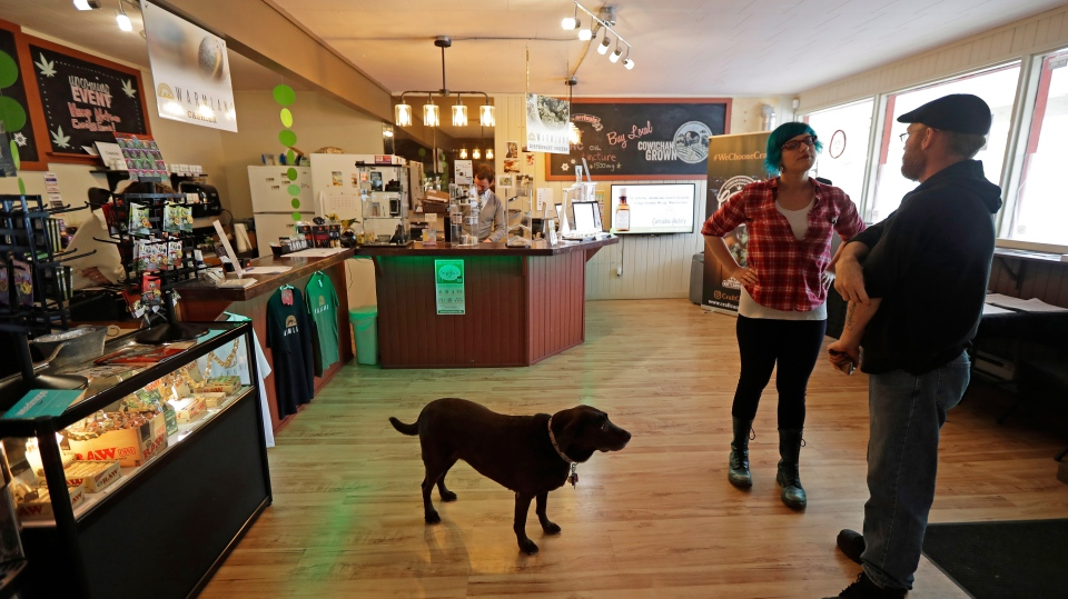 In this Sept. 24, 2018 photo, customer Seth McKay, right, talks with manager Ruby Bressan, at the Warmland Centre, a medical marijuana dispensary in Mill Bay, British Columbia, on Vancouver Island, as shop dog Delilah looks on. On Oct. 17, 2018. (AP Photo/Ted S. Warren)
