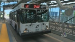 Transit challenge posed to council
