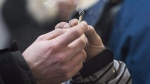 A marijuana joint is shared at Cannabis Culture in Montreal, on Dec. 16, 2016. (Graham Hughes / THE CANADIAN PRESS)
